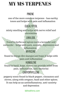 multiple sclerosis cannabis it s all about the terpenes bbhwithms